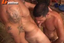 Canavial da foda entre homens